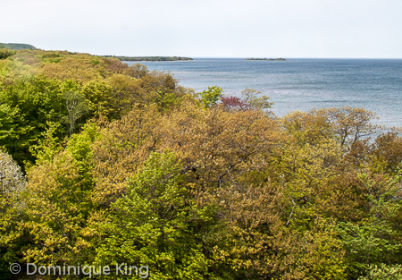 Point Iroquois (4 of 4)