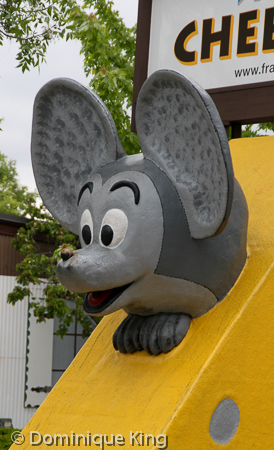 Cheese Mouse Frankenmuth MI